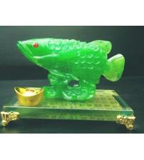 Cá Kim Long chiêu tài